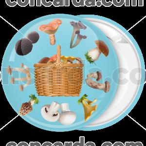 Κονκάρδα το καλάθι των μανιταριών