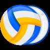 Κονκάρδα μπάλα Βόλεϊ τρίχρωμη