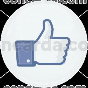 Κονκάρδα facebook Like button