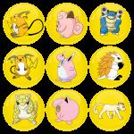 Κονκάρδες σετ 9 τεμαχίων Pokemon Raichu and friends Collection