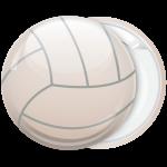 Κονκάρδα μπάλα Βόλεϊ κλασσική λευκή