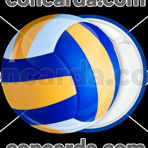Κονκάρδα μπάλα Βόλεϊ κλασσική τρίχρωμη